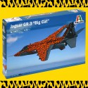 "SEPECAT Jaguar Gr.3 ""BIG CAT"" Special Colors"
