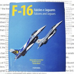 F-16 Falcons and Jaguars book